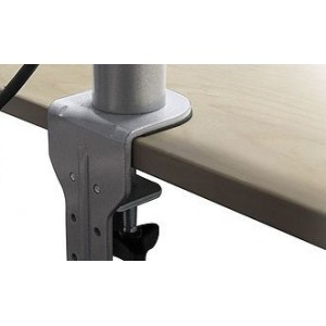 Standard Monitor Arms